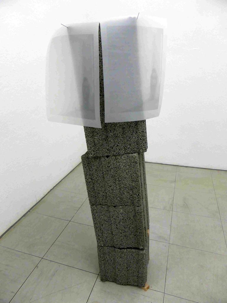 Anne Müller: distortion