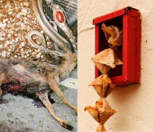 Sorgaltspflicht - Collage K. Forster - S. Gross