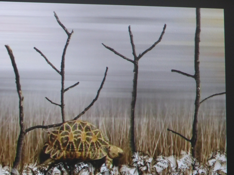 """Maria Korporal, Passing By, 2008, Rome, Italy, Experimental video and animation, 7`39"""" Langsamkeit"""