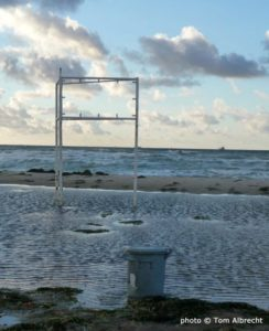 Das Meer - C Tom Albrecht