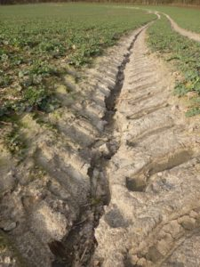 Tractor track with gully for humus, C Tom Albrecht - Residency and Exhibition: The Soil we live of