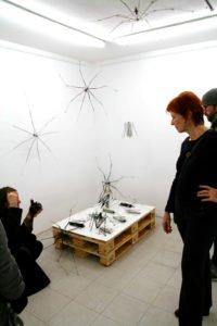 Spiders. Irene Hoppenberg