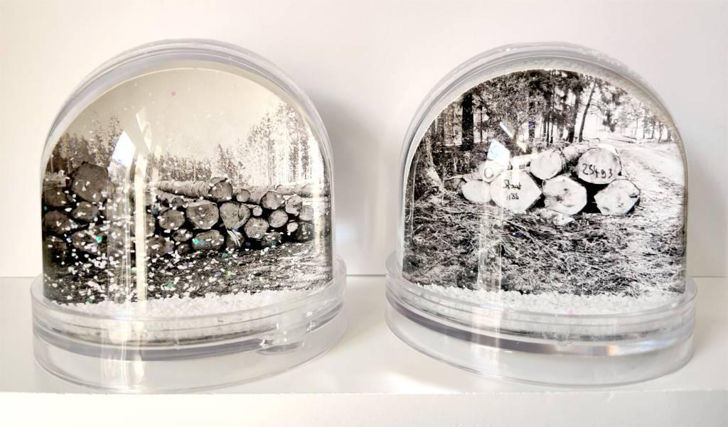 Victoria Hohmann: Kahlschlag (Schneekugeln)