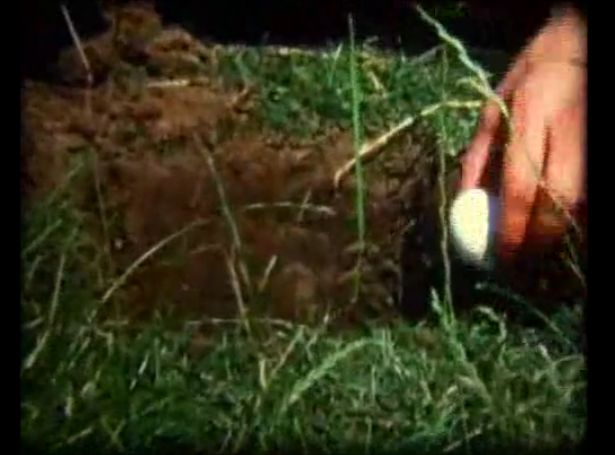 Egg excavation, Super 8 film - video, 3 min. action by Tom Albrecht on Rhine meadow Düsseldorf-Oberkassel, 1971 Beuys for Future